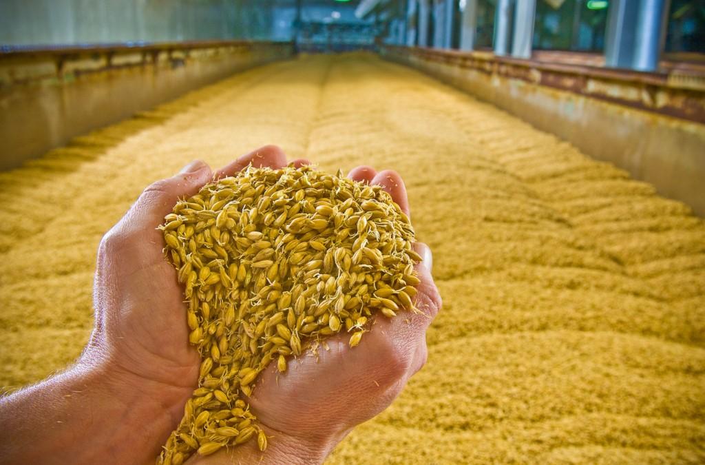 Dodávky surovin pro výrobu piva a cideru pro pivovary